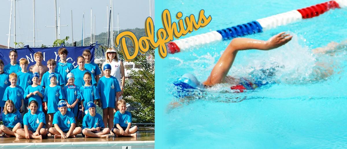 Dolphins- Swim Team