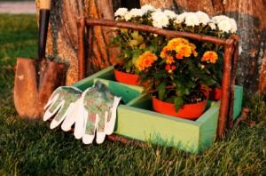 Neighborhood Garden Club